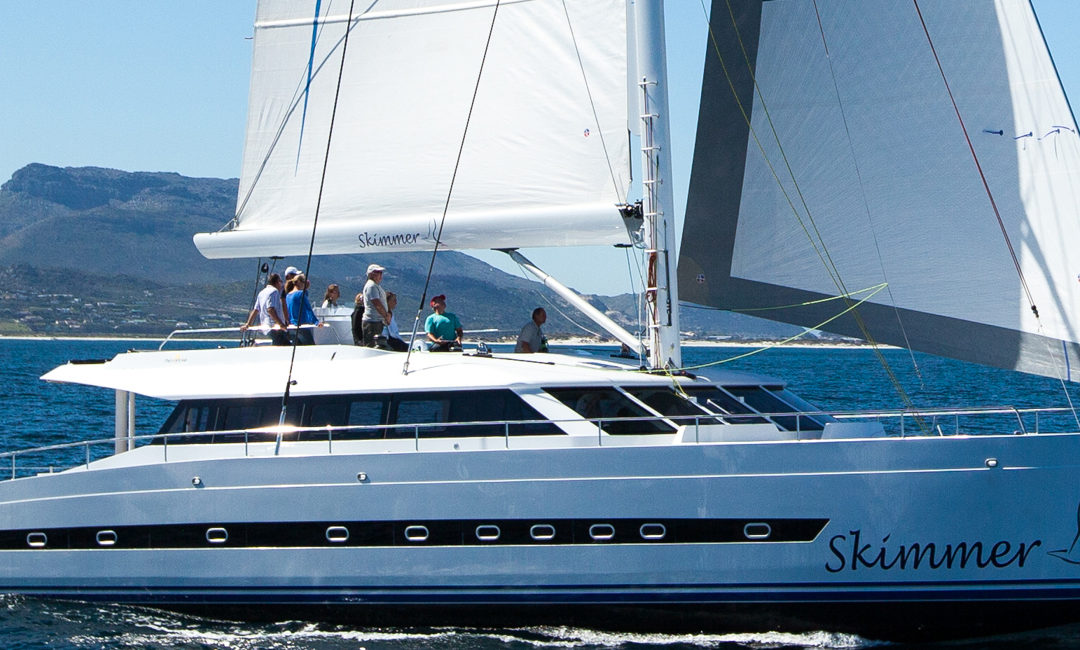 Open Ocean 740 Performance Cruising Catamaran Review in Sailing Magazine