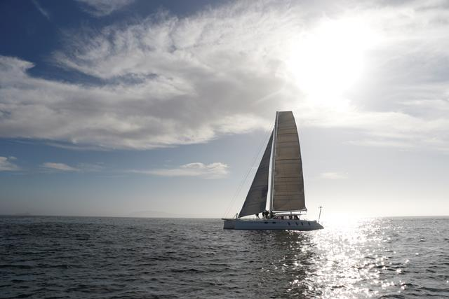 M60_Full_Carbon_High_Performance_Sailing_Catamaran (4)